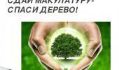 """Экологическая акция """"Сдай макулатуру - спаси дерево"""